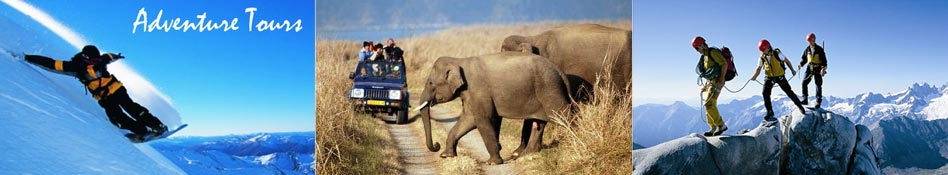 Adventure Tours - Tour Travel World